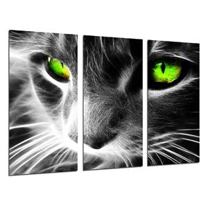 cuadros tripticos de animales